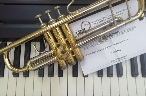 licence-za-muzicare